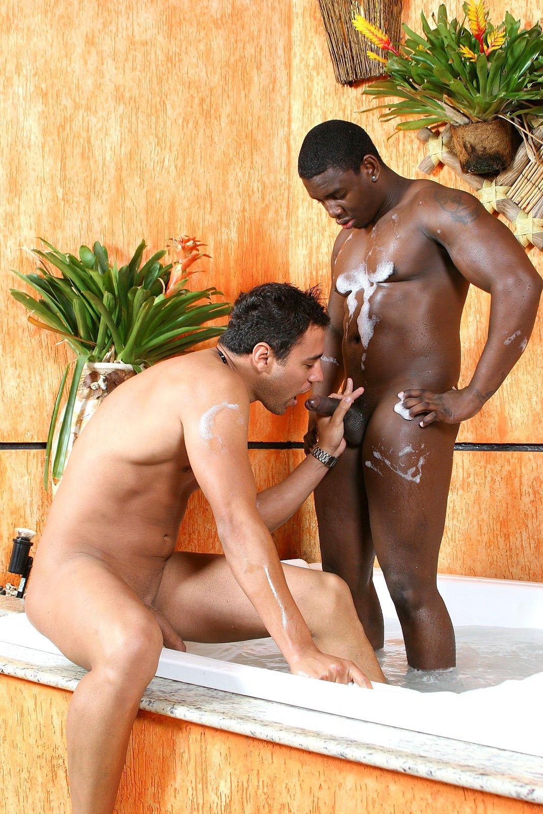 Gay black porn free
