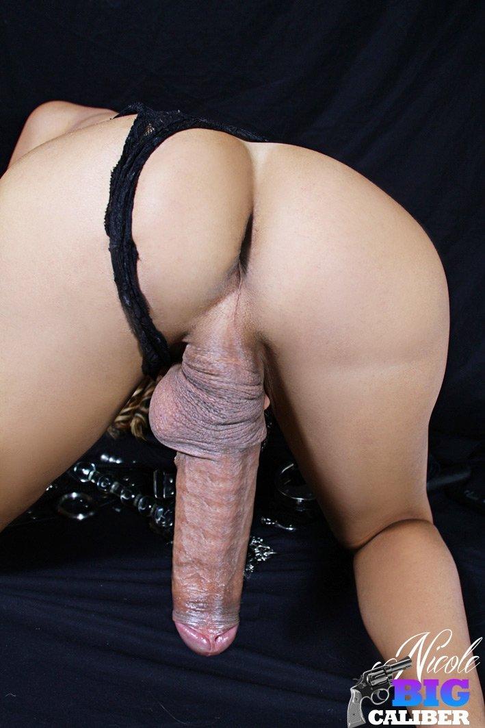 Транссексуал - Фото галерея 981220